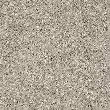 Shaw Floors Foundations Take The Floor Twist I Net Threshold 00732_5E069