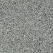 Shaw Floors Value Collections Take The Floor Twist II Net Reflection 00541_5E070