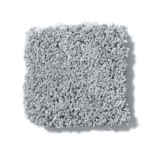 Shaw Floors Value Collections Take The Floor Twist II Net Pewter 00551_5E070