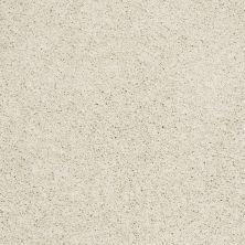 Shaw Floors Foundations Take The Floor Twist Blue Modest 00116_5E071