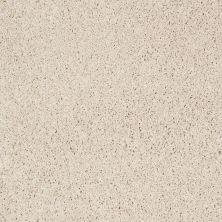 Shaw Floors Foundations Take The Floor Twist Blue Biscotti 00131_5E071
