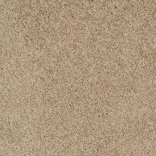 Shaw Floors Foundations Take The Floor Twist Blue Hazelnut 00750_5E071