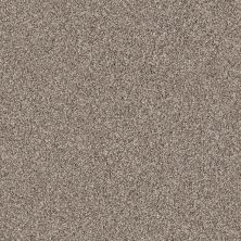 Shaw Floors Value Collections Take The Floor Tonal II Net Triumph 00164_5E073