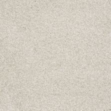 Shaw Floors Foundations Take The Floor Tonal II Net Cashmere 00260_5E073
