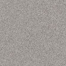 Shaw Floors Foundations Take The Floor Tonal II Net Stellar 00562_5E073