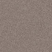 Shaw Floors Foundations Take The Floor Tonal II Net Tundra 00760_5E073