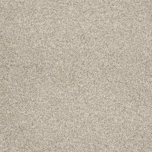 Shaw Floors Foundations Take The Floor Tonal Blue Net Fantasy 00162_5E074