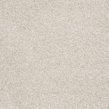 Shaw Floors Foundations Take The Floor Tonal Blue Net Cashmere 00260_5E074