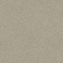 Shaw Floors Montage I Shoreline Haze 120T_5E081