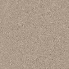 Shaw Floors Simply The Best Montage I Midtown Brown 720T_5E081
