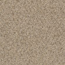 Shaw Floors Absolutely It Sun Glaze 00200_5E084
