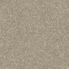 Shaw Floors Value Collections Hubbell 37 Raw Wood 00110_5E086