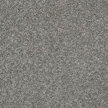 Shaw Floors Value Collections Hubbell 37 Sparrow 00504_5E086