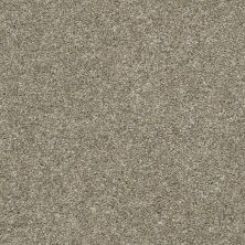 Shaw Floors Value Collections Hubbell 37 Weathered 00710_5E086