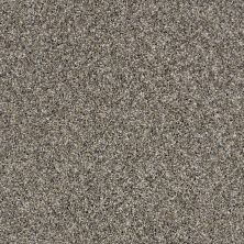 Shaw Floors Value Collections Absolutely It Net Boulder 00501_5E093