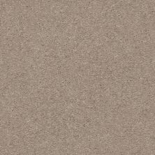 Shaw Floors Value Collections Attainable Net Pebble Path 101S_5E094
