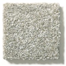 Shaw Floors Value Collections Attainable Solid Net Soft Fleece 120T_5E094
