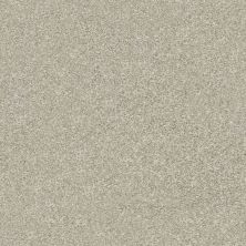 Shaw Floors Value Collections Attainable Net Desert Light 121T_5E094