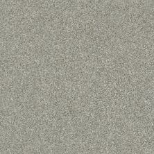 Shaw Floors Simply The Best Attainable Net Clay 122T_5E094