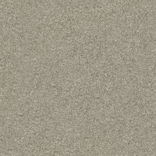 Shaw Floors Value Collections Attainable Solid Net Winter Dunes 123T_5E094