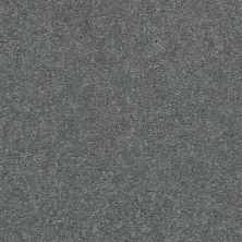 Shaw Floors Simply The Best Attainable Net Slate 501S_5E094