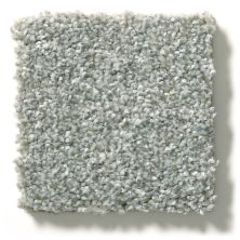 Shaw Floors Value Collections Attainable Solid Net Sterling 520T_5E094