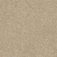 Shaw Floors Value Collections It's All Right Net Etchings 00111_5E095