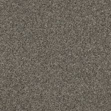 Shaw Floors Value Collections It's All Right Net Aged Steel 00511_5E095