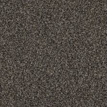 Shaw Floors Value Collections It's All Right Net Tree Bark 00512_5E095
