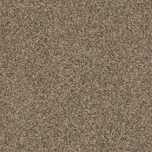 Shaw Floors Value Collections It's All Right Net River Rock 00711_5E095