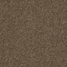 Shaw Floors Value Collections It's All Right Net Maple Syrup 00712_5E095