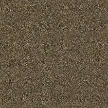 Shaw Floors Value Collections It's All Right Net Caramel Pecan 00713_5E095