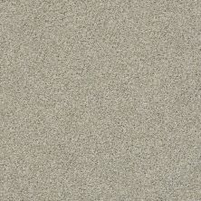 Shaw Floors Value Collections Momentum I Net Mystical Cream 130A_5E096