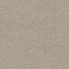 Shaw Floors Value Collections Momentum II Net Driftwood 120T_5E097