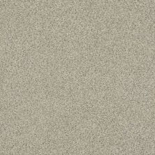 Shaw Floors Value Collections Momentum II Net Mystical Cream 130A_5E097