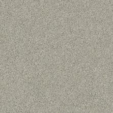 Shaw Floors Value Collections Momentum II Net Moondance 131A_5E097