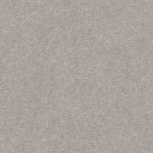 Shaw Floors Value Collections Momentum II Net Subtle Touch 500S_5E097