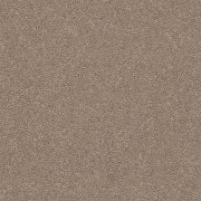 Shaw Floors Value Collections Momentum II Net Canyon Buff 700S_5E097
