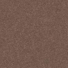 Shaw Floors Value Collections Momentum II Net Farmhouse 701S_5E097