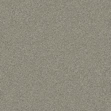 Shaw Floors Value Collections Momentum II Net Rockslide 740A_5E097