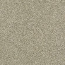 Shaw Floors Simply The Best Montage I Net Lunar Surface 140A_5E098