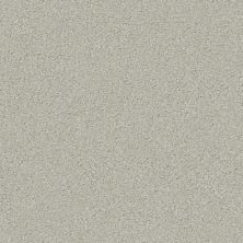 Shaw Floors Simply The Best Montage I Net River Rock 530A_5E098