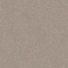Shaw Floors Value Collections Montage II Net Parisian Lights 102S_5E099