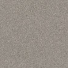 Shaw Floors Simply The Best Montage II Net Polished Stone 103S_5E099