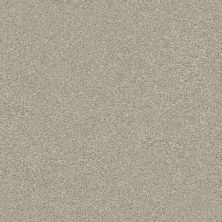 Shaw Floors Simply The Best Montage II Net Shoreline Haze 120T_5E099