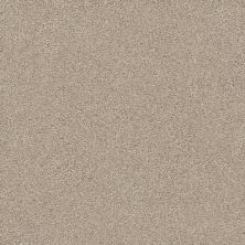 Shaw Floors Value Collections Montage II Net Chateau 121T_5E099