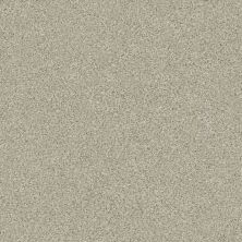Shaw Floors Simply The Best Montage II Net Spun Wool 130A_5E099