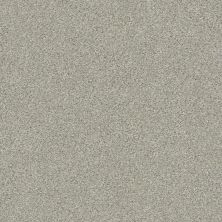 Shaw Floors Value Collections Montage II Net Morning Frost 131A_5E099