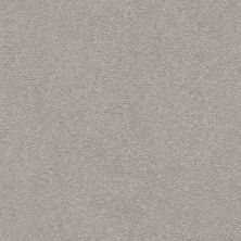 Shaw Floors Simply The Best Montage II Net Classic Silver 500S_5E099