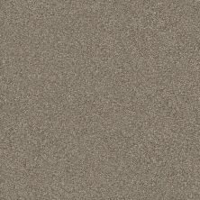 Shaw Floors Value Collections Montage II Net Midtown Brown 720T_5E099